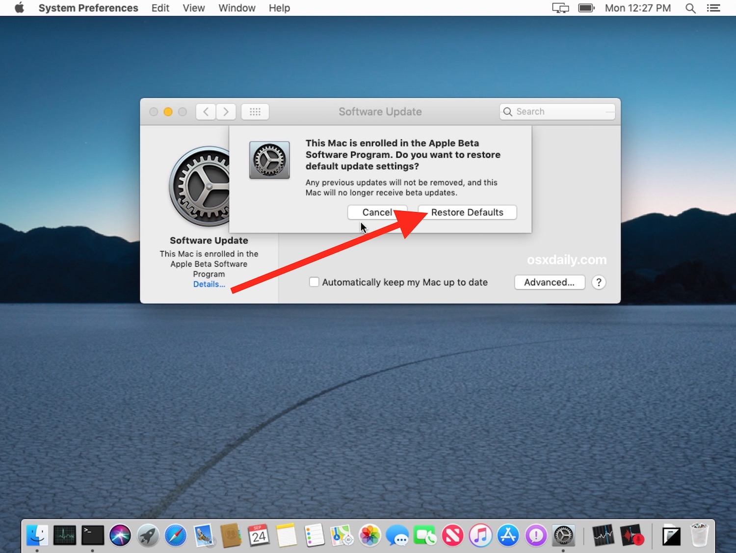 How to stop receiving beta macOS updates for system software