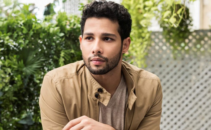 When Siddhant Chaturvedi wrote his first poem for a girl, but she threw it away