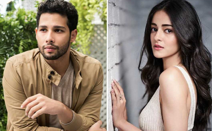 "Siddhant Chaturvedi on his nepotism Comment from Ananya Panday: ""The Internet has made something of it"""