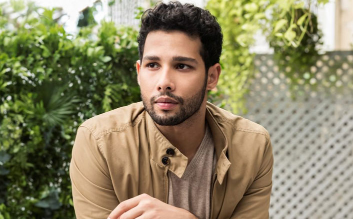 Bunty Aur Babli 2 actor Siddhant Chaturvedi becomes an assassin and his mother's apron plays an important role