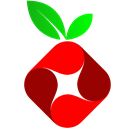 Pi-hole icon