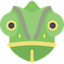 Chameleon WebExtension icon